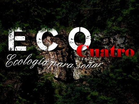 Adelanto todas las novedades del regreso de eco cuatro for Novedades del espectaculo