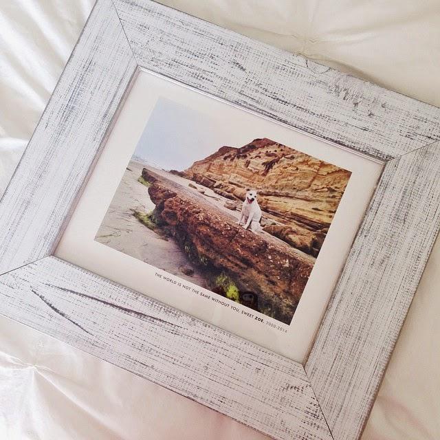 minted custom photo gift