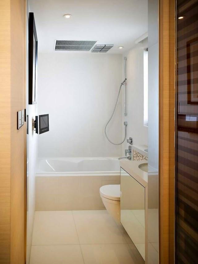 Small Bathroom Ideas, Furnishings Bath Handheld Shower Tv Wall
