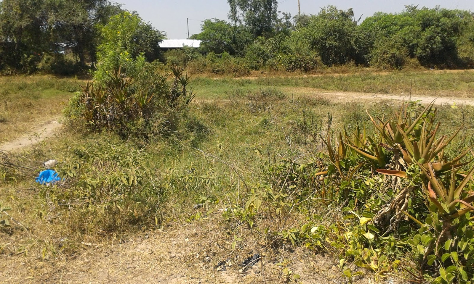 Get Land for sale Homabay and do investment