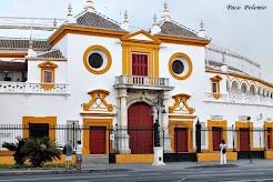 Plaza de toros de la Maestranza.