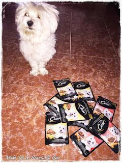 bolsitas cesar comida para perros