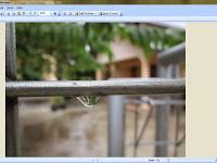 Cara Mudah Kompres Gambar / Foto Jadi Ringan