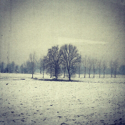 Po Valley Winter Landscape - Instagram Picture