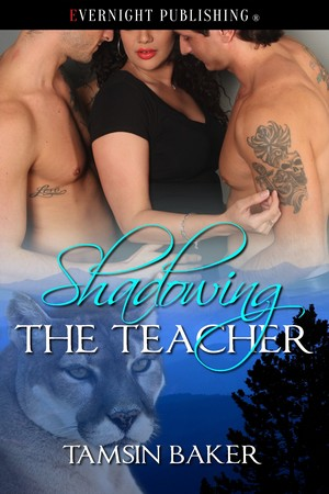 Shadowing the Teacher