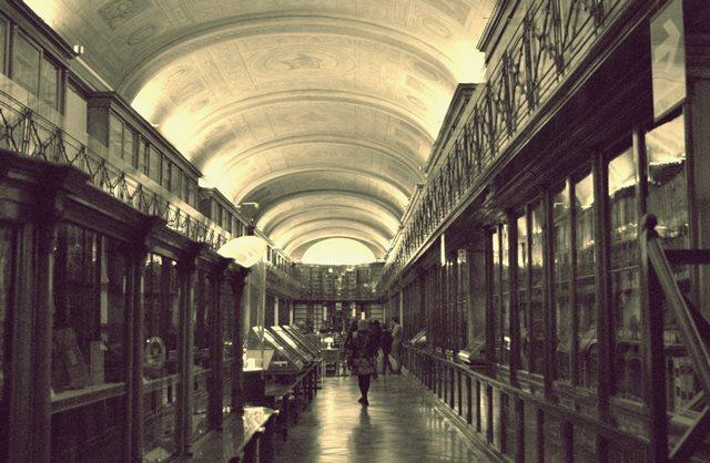 torino musei imperdibili