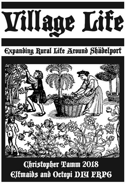 Village Life Book