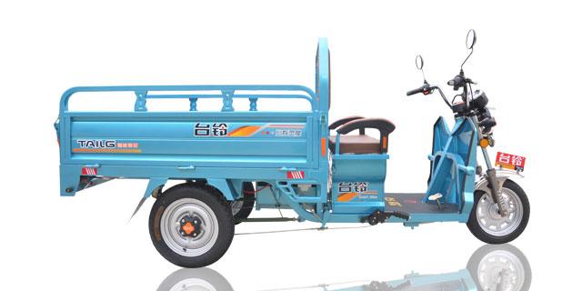 Triciclo Electrico 3 Ruedas de Carga Moto Carro