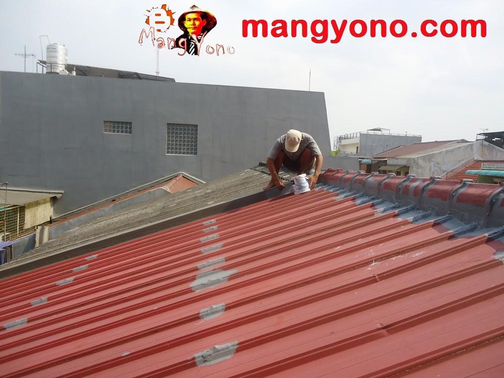 Atap seng lapisan zinc dan coating, cat
