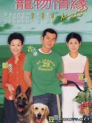Chú Chó Thông Minh