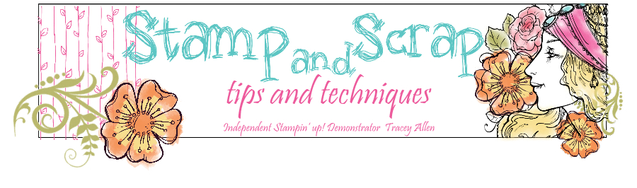 Stamp and scrap tips and techniques