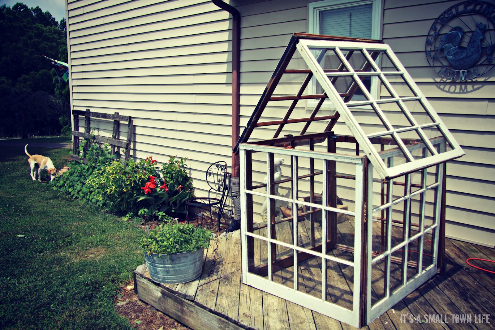 decorative greenhouse project