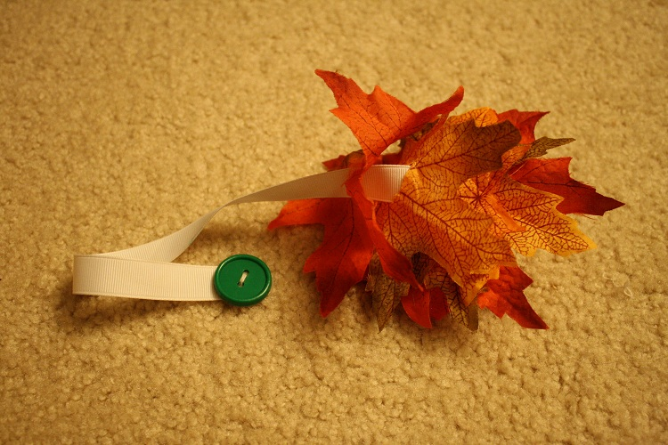 Leaf Button Snake (Photo by Julie at The Adventures of Bear)