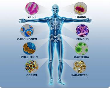 www.JumbolifeShop.com ศูนย์รวมอาหารเสริม เพื่อสุขภาพและความงามระดับพรีเมี่ยม