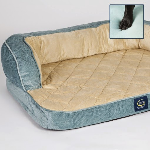 Life With Beagle: Serta pet beds: Your dogs may not want ...