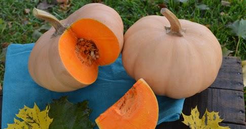 Image result for image butterkin squash