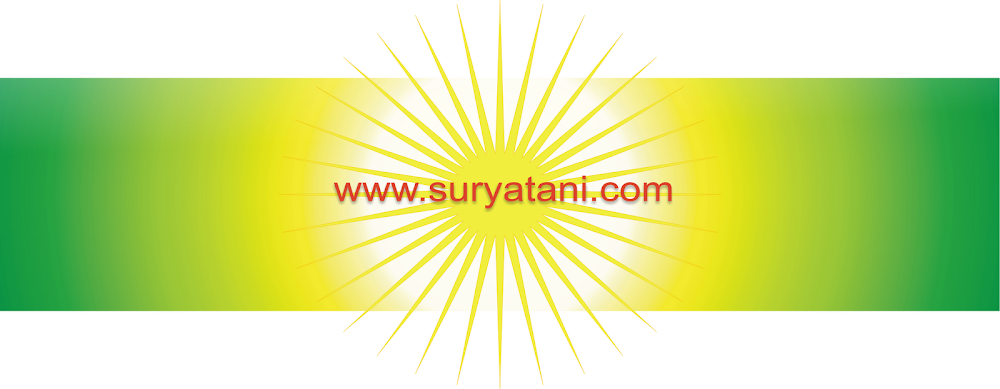 Bibit Buah | jual bibit buah | TANAMAN BUAH | JUAL | BUAH BUAHAN | POHON BUAH | PERTANIAN | PERKEBU