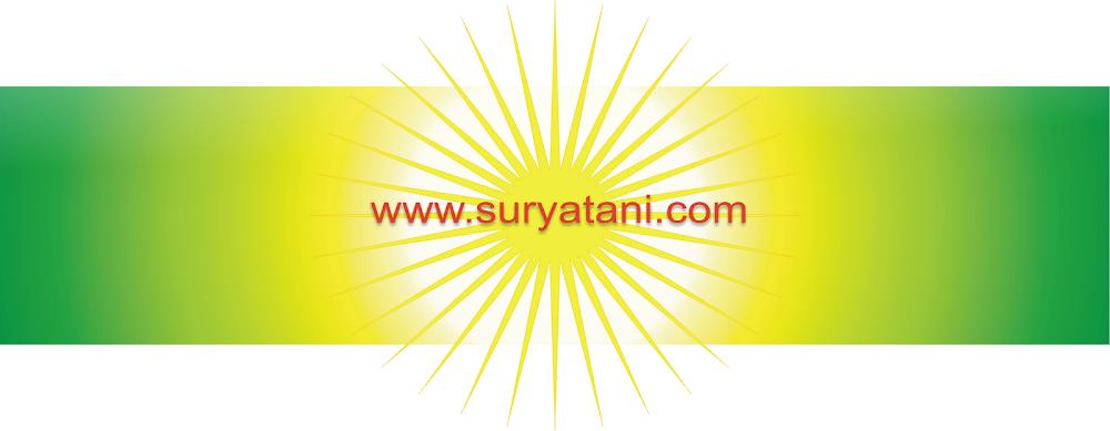 JUAL BIBIT | Bibit Buah | jual bibit buah | jual bibit | bibit buah | bibit unggul | trubus