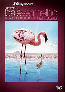 Download Grande Balé Vermelho O Mistério dos Flamingos Dublado BDRip