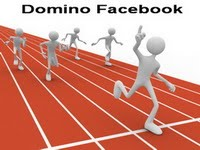 Domino Facebook Diary