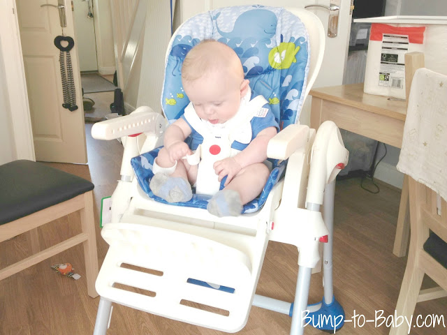 chicco highchair polly