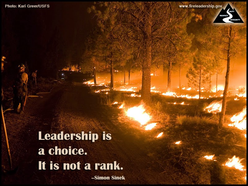 Leadership is a choice. It is not a rank. ~ Simon Sinek