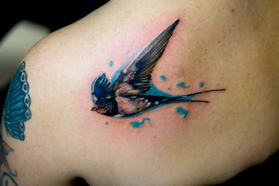 sparrow tattoos ideas free pictures of sparrow bird tattoos. Black Bedroom Furniture Sets. Home Design Ideas