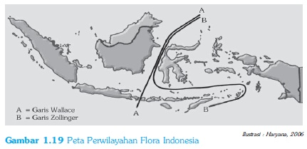 Peta Perwilayahan Flora Indonesia