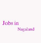 Jobs in Nagaland