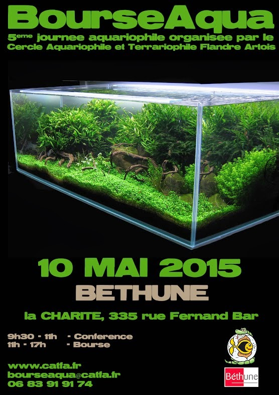 L 39 aquarium la maison bourse aquariophile b thune le for Aquarium a la maison pdf