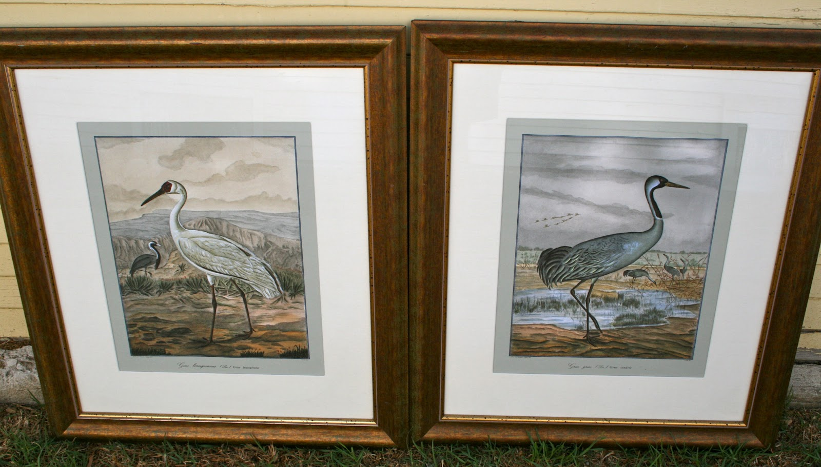 Pair of large framed crane prints 200 culver city for Large prints for sale