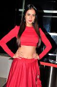 Sonal Chauhan Sizzling at Size Zero Premier-thumbnail-10