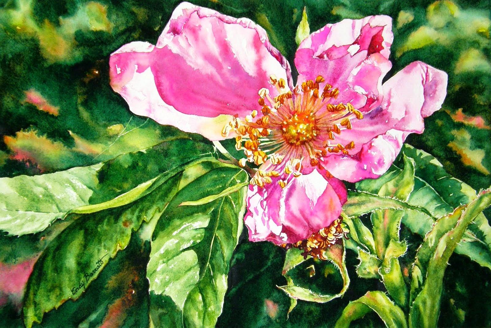 Alberta Rose - Flamboyant!