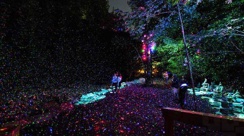 Sendero nocturno a través de bosque iluminado se convierte en experiencia mágicamente inmersiva