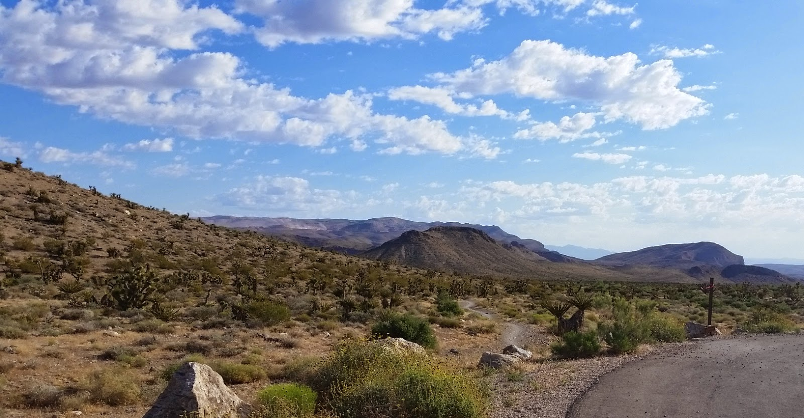 Ride the Wind 16-mile Race Recap | Las Vegas, NV