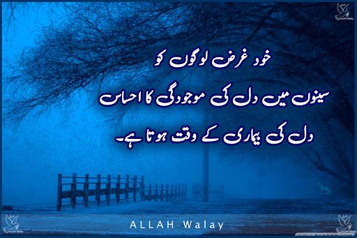 Khud gharz logon ko Dil ki majoodgi ka ahsaas - Heart Broken Lines Pics