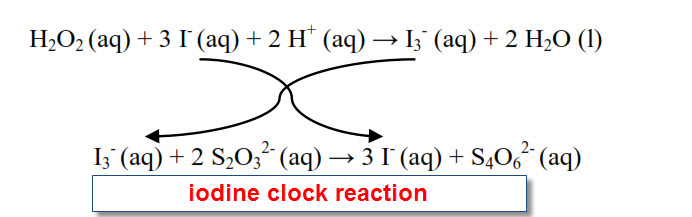 chemical kinetics the iodine clock reaction