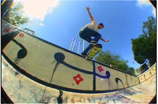 stay gold b-side Andrew Reynolds emerica skate