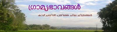 ഗ്രാമ്യഭാവങ്ങള് - ഫോട്ടോ ബ്ലോഗ്