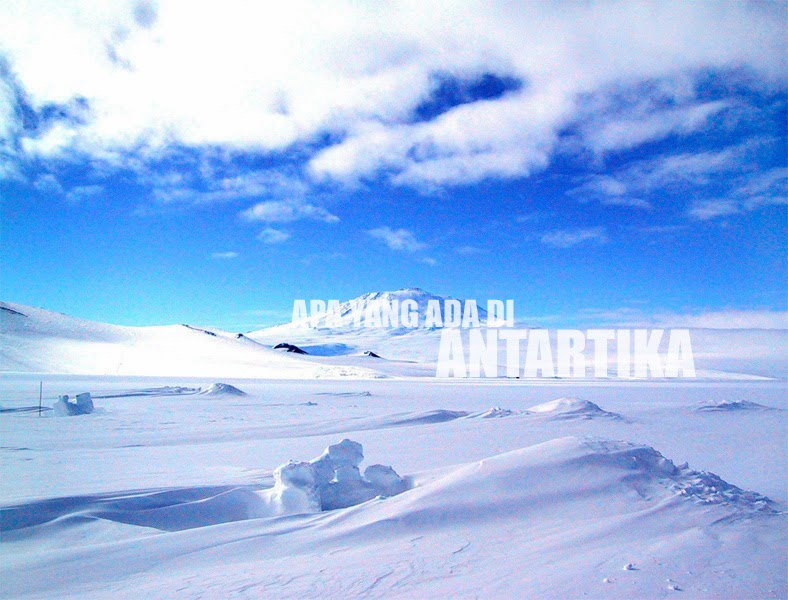 Apa Yang Ada Di Antartika