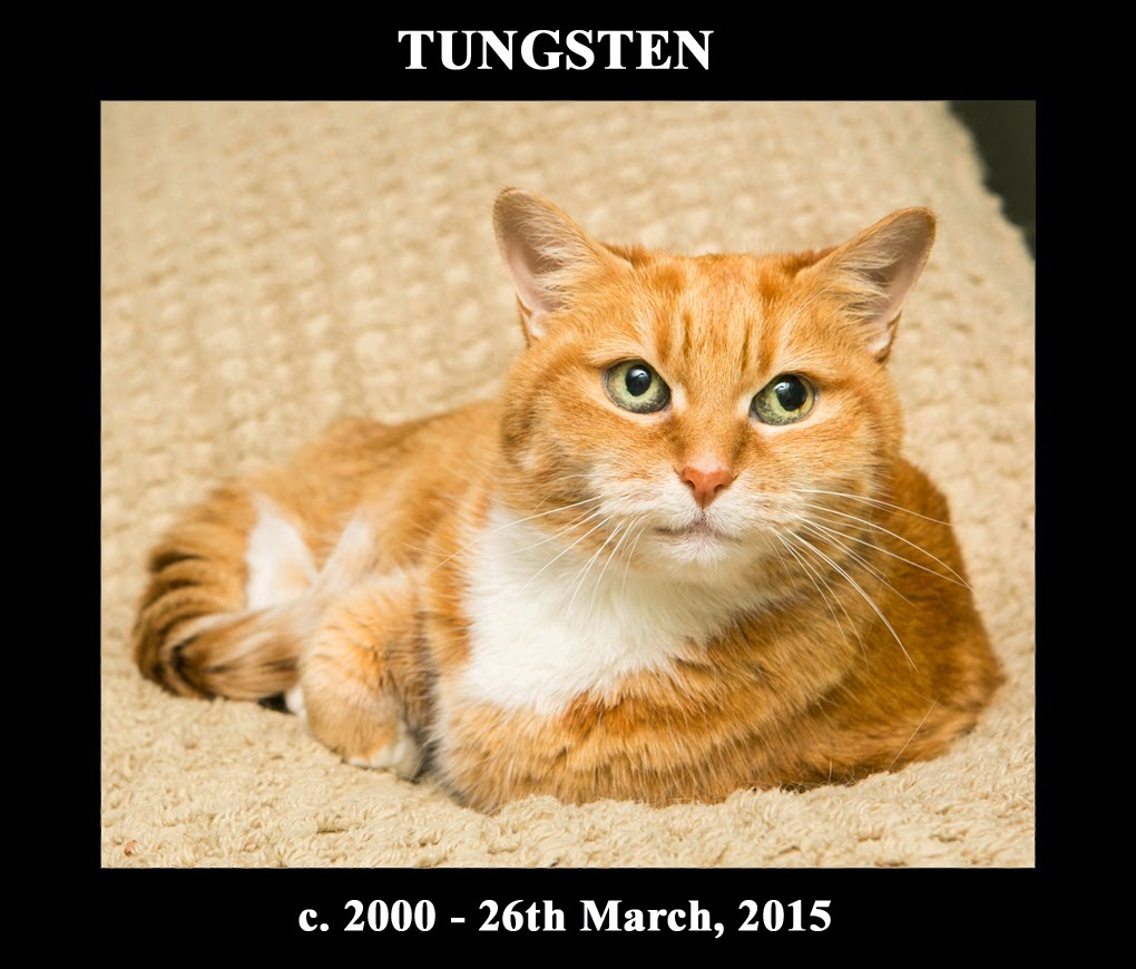 R.I.P. Tungsten