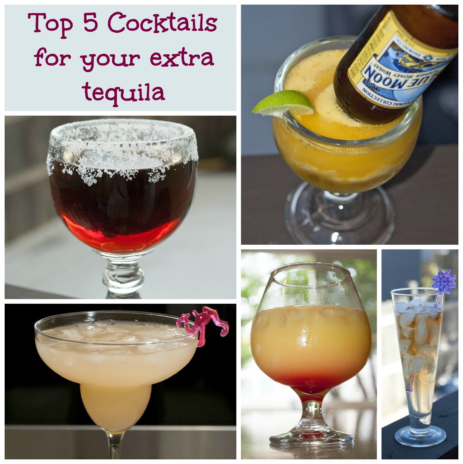 top 5 cocktails for your extra tequila a year of cocktails. Black Bedroom Furniture Sets. Home Design Ideas