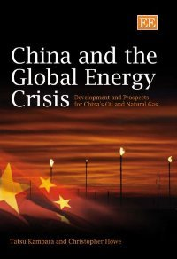 world energy crisis essay An intro to the energy crisis: the energy crisis is a growing problem for everyone in the world it.