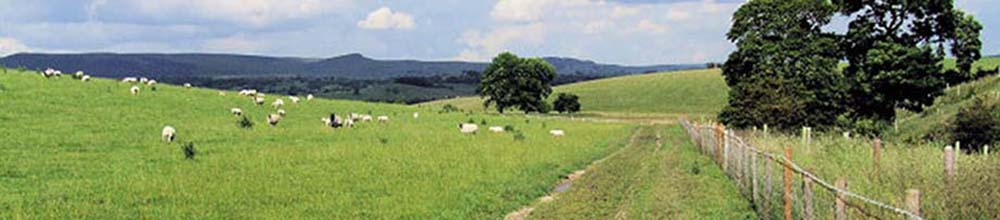 Farming Techniques