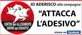 ATTACCA L'ADESIVO