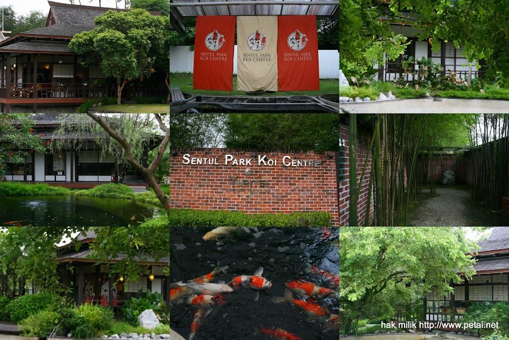Koi Center