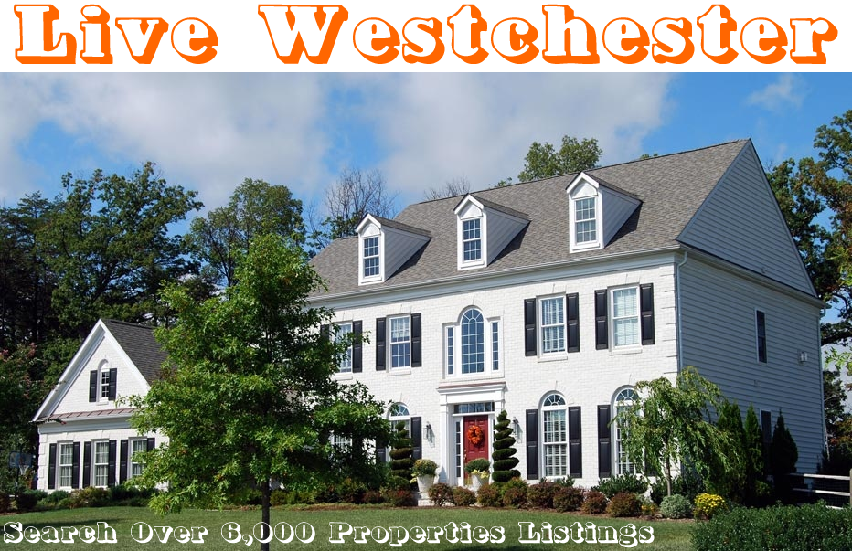 Lower Westchester Homes for Sale or Rent