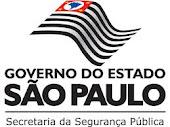 Programa São Paulo em Busca das Crianças e Adolescentes
