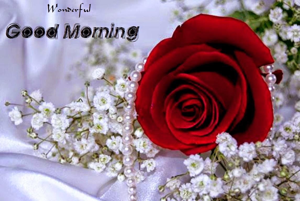 Wallpaper download good morning - Muhammad Talib
