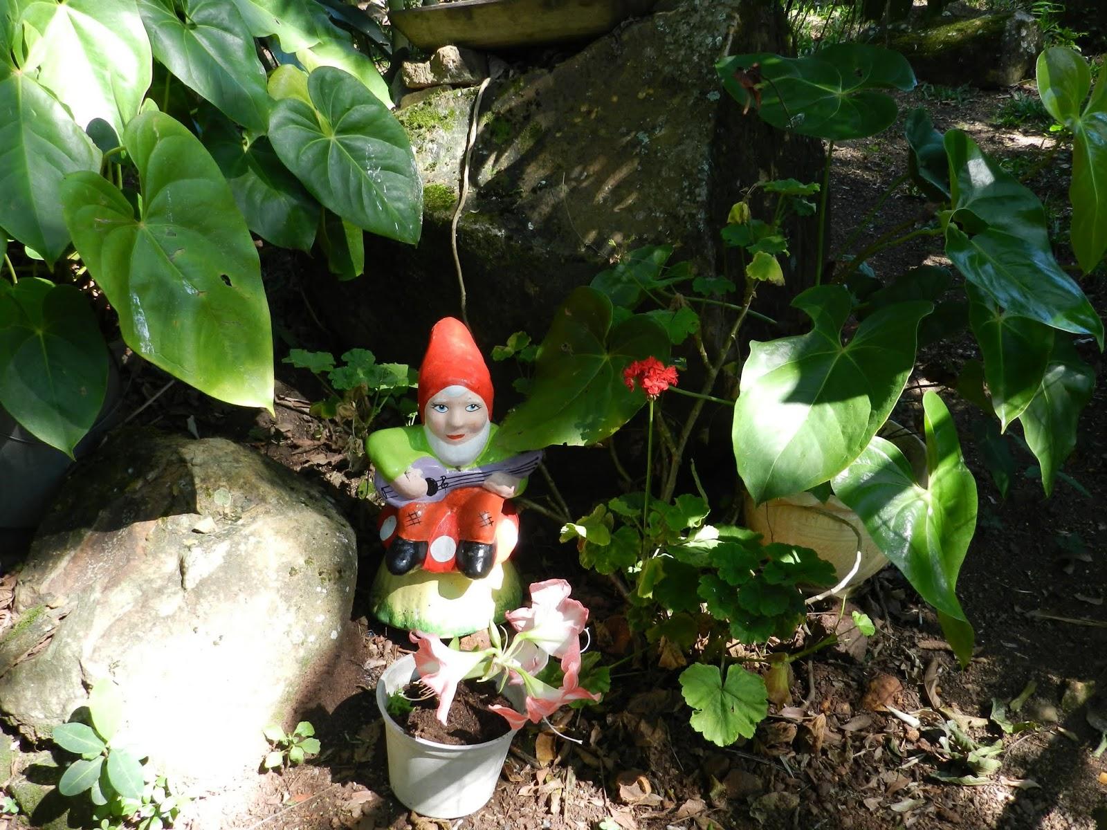 roubo de anao de jardim : roubo de anao de jardim:Pássaros e Flores: Anão de Jardim